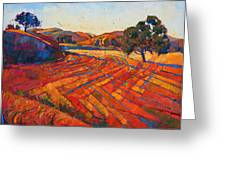 Pastoral Light Greeting Card by Erin Hanson