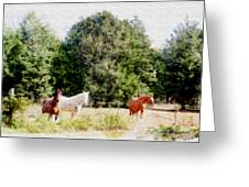Pasture For Three Greeting Card