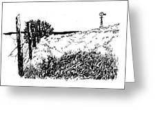Pasture  Greeting Card
