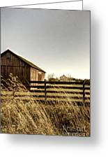 Pasture Greeting Card by Margie Hurwich