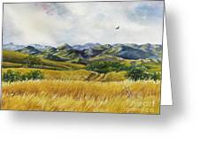 Patagonia Just Down The Valley Greeting Card by Summer Celeste