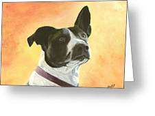 Patches Greeting Card