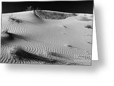 Patches In The Dunes Greeting Card