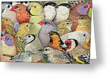 Patchwork Birds Greeting Card