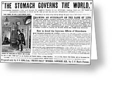 Patent Medicine: Stomach Greeting Card