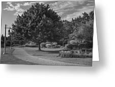 Path At Michigan State University Garden  Greeting Card