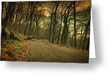 Path IIi Greeting Card