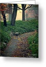 Path In The Forest Greeting Card