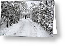 Path In The Snow In Winter In Denmark Greeting Card