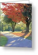 Path Of Change Greeting Card