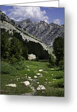Path Of Life Ruby Mountains Stock Trail Greeting Card