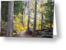 Path Of Peace Greeting Card