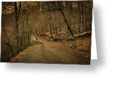 Path Greeting Card by Taylan Apukovska