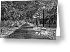 Path Through Eastern Greeting Card