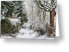 Path Through The Snow Greeting Card