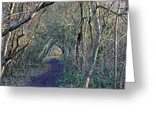 Path Through The Woods Greeting Card
