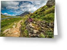 Path To Lake Idwal Greeting Card by Adrian Evans