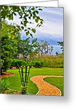 Path To Marshes Greeting Card