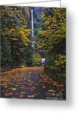 Path To Multnomah Falls Greeting Card