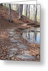 Path To Somewhere Greeting Card