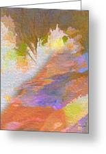 Path To Sunset Rock Greeting Card
