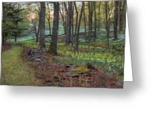 Path To The Daffodils Greeting Card by Bill Wakeley