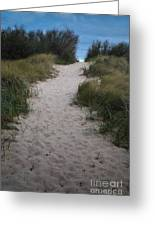 Path To The Dunes Greeting Card