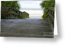 Path To The Empty Beach Greeting Card