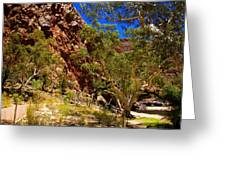Path To The Gum Trees And Waterhole Greeting Card