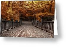Path To The Wild Wood Greeting Card by Scott Norris