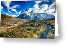 Path To Torres Del Paine Greeting Card