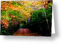 Paths We Choose Greeting Card