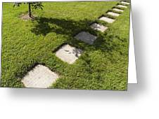 Pathway And Shadows Greeting Card