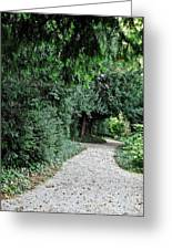 Pathway Of Monks Greeting Card