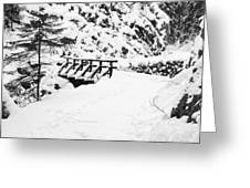 Pathway Through The Snow Greeting Card