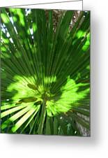 Green Plant Pattern Greeting Card