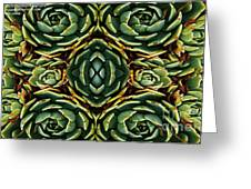 Patterns Greeting Card