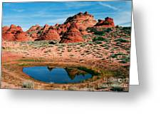 Paw Hole Reflections Greeting Card by Mike  Dawson