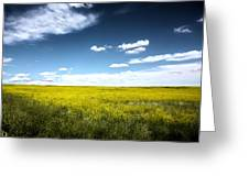 Pawnee Grasslands Greeting Card