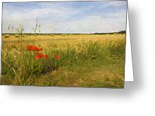 Paysage De Normandie Greeting Card