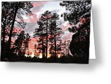 Payson Pines Sunset Greeting Card
