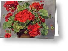 Geranium In An Earthenware Vase Greeting Card