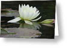 Peace And Enlightment Greeting Card
