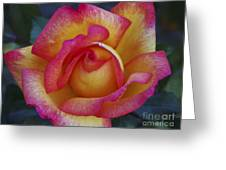 Peace In Floral Format Greeting Card