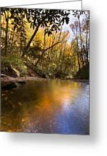 Peace Like A River Greeting Card