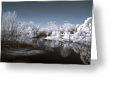 Peace River North Near Infrared Arcadia Florida Usa Greeting Card