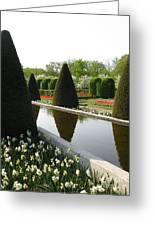 Peace Upon You. Keukenhof In Spring Greeting Card