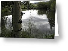 Peaceful Aspen With Pond And Clouds Greeting Card