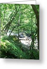 Peaceful Brook Greeting Card
