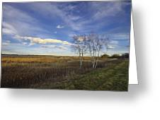 Peaceful Countryside Greeting Card